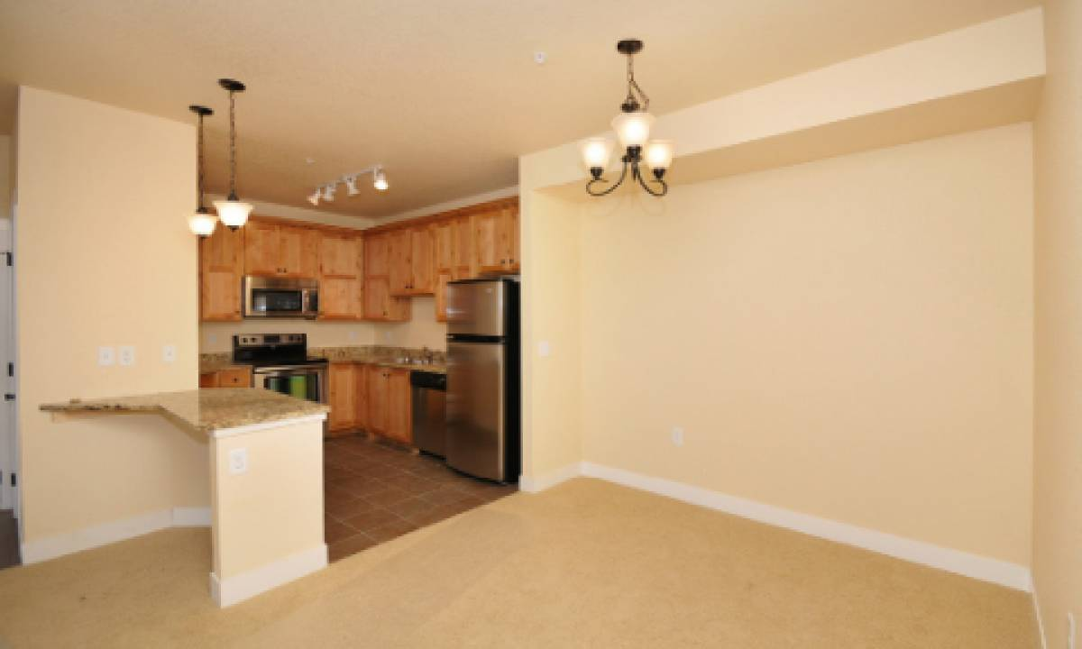 Kitchens open up onto the living and dining space