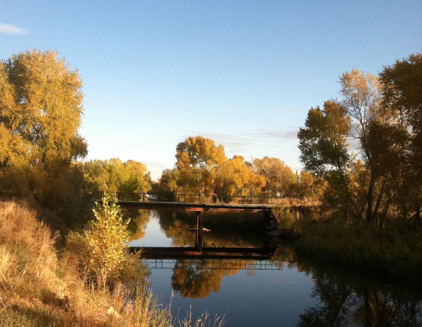 Poudre River and native vegetation make a scenic setting for Pateros Creek